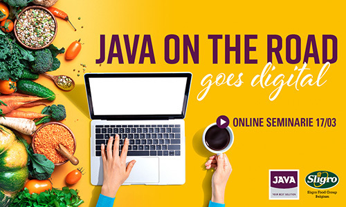 JAVA ON THE ROAD online seminarie